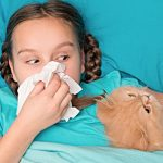 Medicine-Free Methods for Easing Indoor Allergies