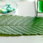 Is Kratom as Dangerous as the FDA Claims? It's Hard to Tell