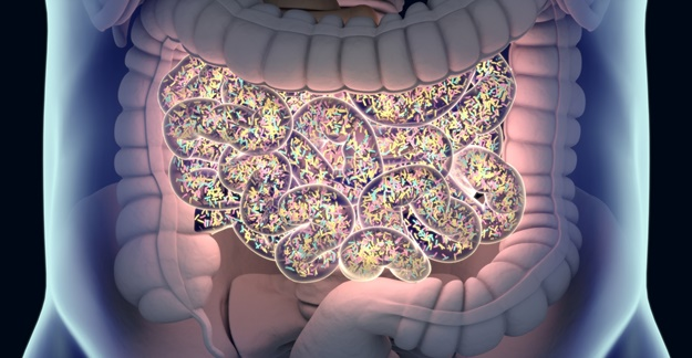 Probiotics May Not Work For Everyone and Can Potentially Be Harmful
