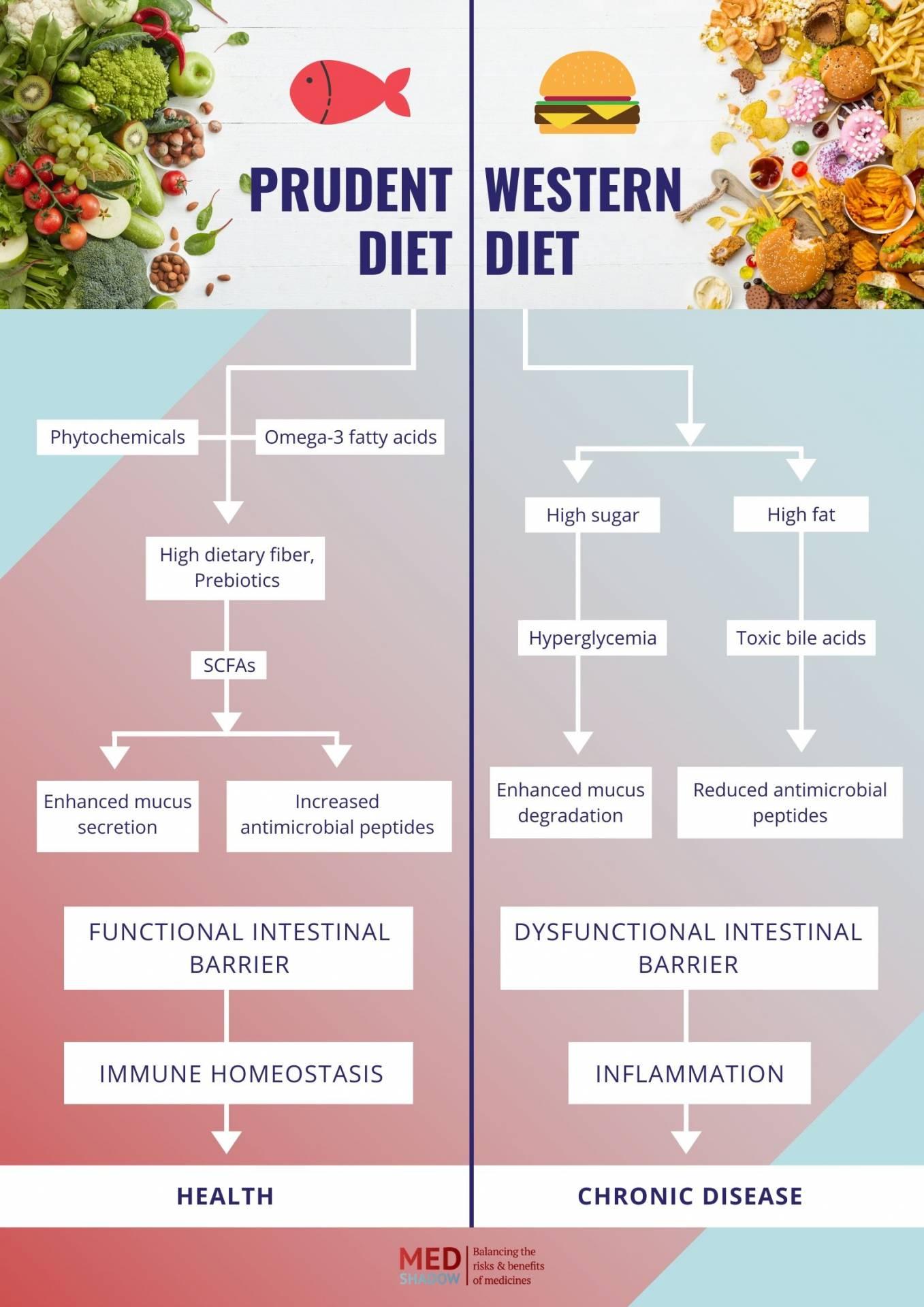 prudent diet vs western diet